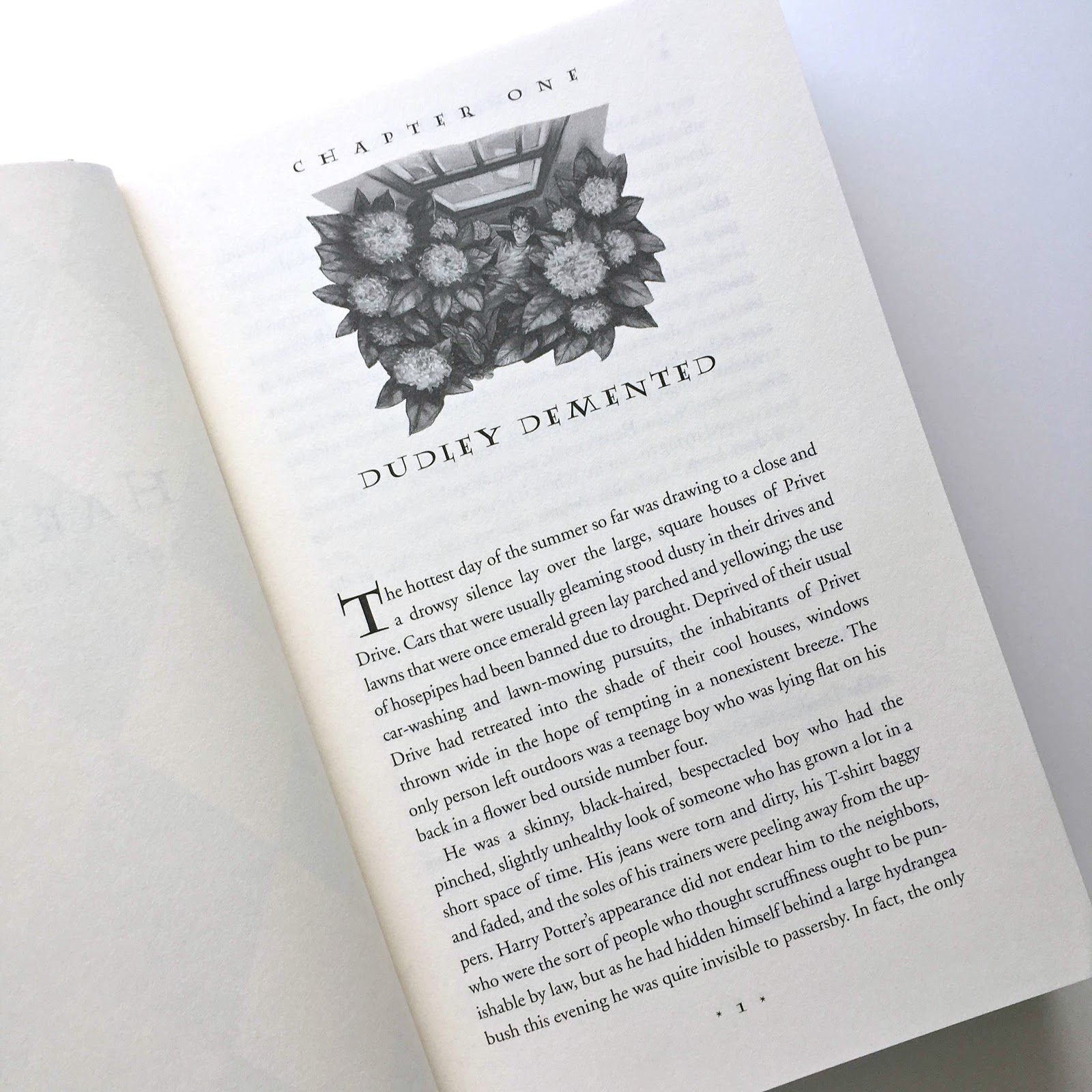 Harry Potter Book Pages : Jactionary book review harry potter and the order of