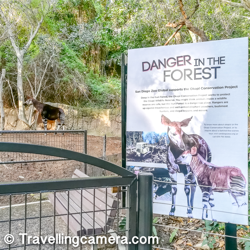 We had lot of fun at San Diego Zoo and highly recommend this when you are in the city. San Diego Zoo ticket is worth the experience it offers.