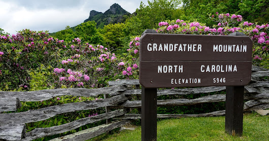 Grandfather Mountain Road Trip