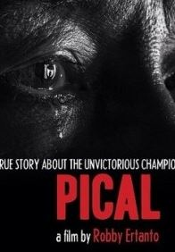 Download Film Pical 2016 HD Bluray Full Movie