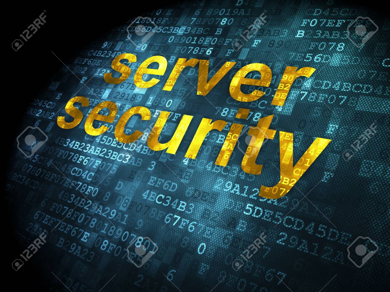 Sql Server Security Authorization Conceptserver Role Sqldbma Dbms Database And