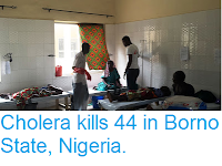 https://sciencythoughts.blogspot.com/2017/09/cholera-kills-44-in-borno-state-nigeria.html