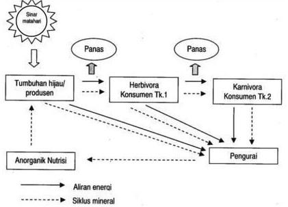 Arus energi