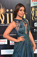Shriya Saran in Beautiful Transparent Dark Gown IIFA Utsavam Awards 2017 051.JPG