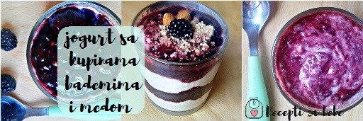 vocni jogurt od kupina