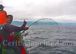 Jig Fishing Strike Monster Gt In The Morning