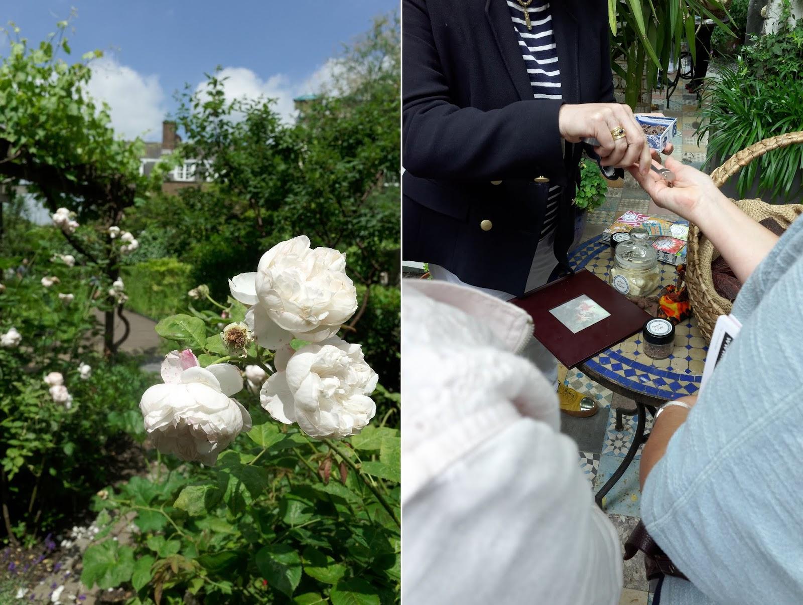 Open Garden Squares London - Tate community garden and Roccoco Chocolates garden