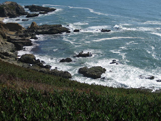 View of the rocky shoreline from high atop Bodega Head, California