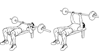 close grip bench press,close grip bench press movement