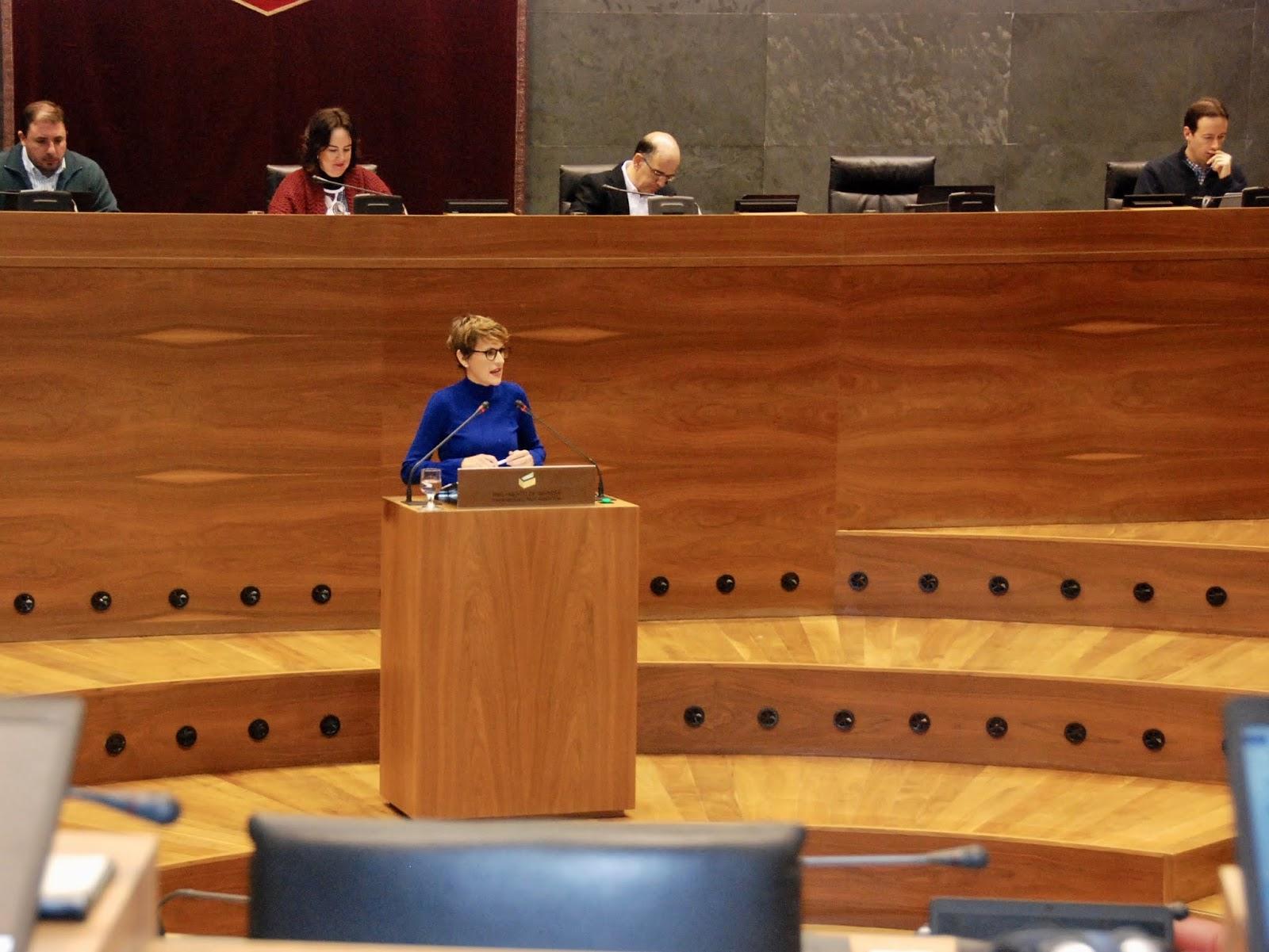 El PSN-PSOE critica que se haya incumplido la promesa de un Plan de Empleo