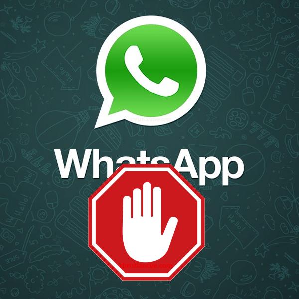 filofóbicos bloquean whatsaap