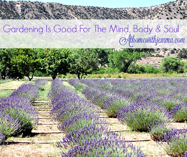 grow-garden-healthy-lavender-food-veggies-jemma