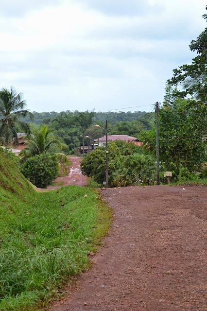 guyane, cacao, marché, planeur bleu