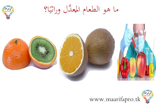 Bac Maroc