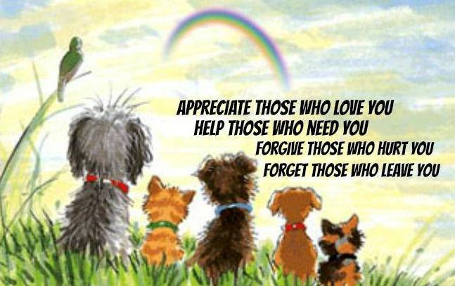 Cute animals with love quotes - photo#35