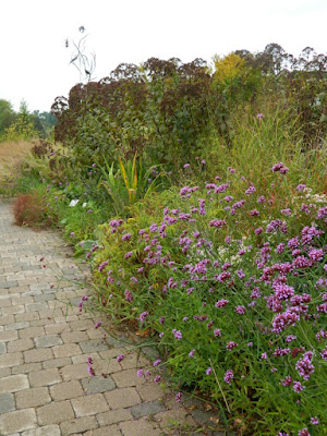 Entry Garden Walk at the Toronto Botanical Garden Verbena bonariensis and Joe Pye Weed by garden muses-not another Toronto gardening blog