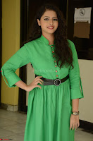 Geethanjali in Green Dress at Mixture Potlam Movie Pressmeet March 2017 052.JPG