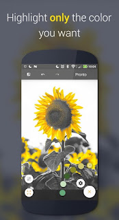 Paletta – Smart color splash v2.1.2 Pro APK