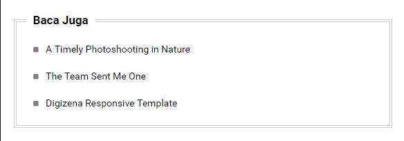 Contoh Widget CSS Style 2