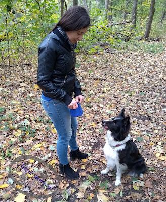treningowa saszetka na psie smakołyki