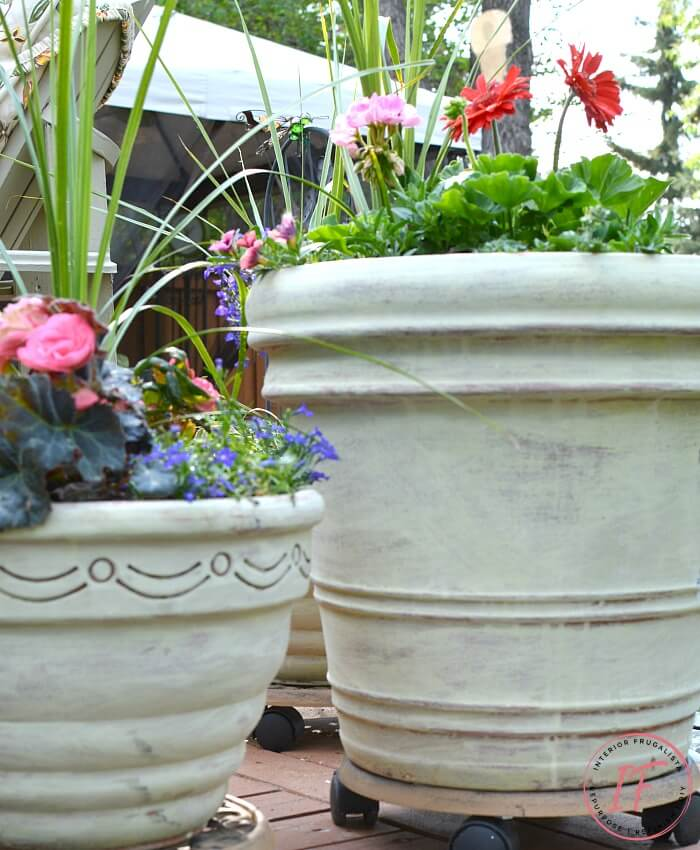 How to transform large terracotta flower pots with lovely weathered French Country style with a wash of Versailles chalk paint and French graphics.