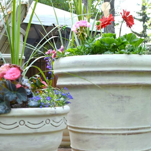Large Terracotta Pots Get French Country Style