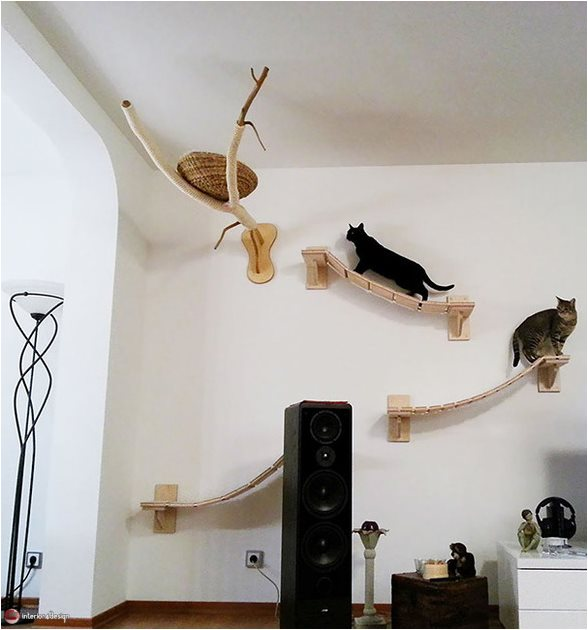 Decorating Ideas For Pet Lovers 10