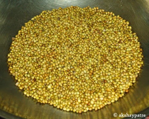 roasted coriander seeds