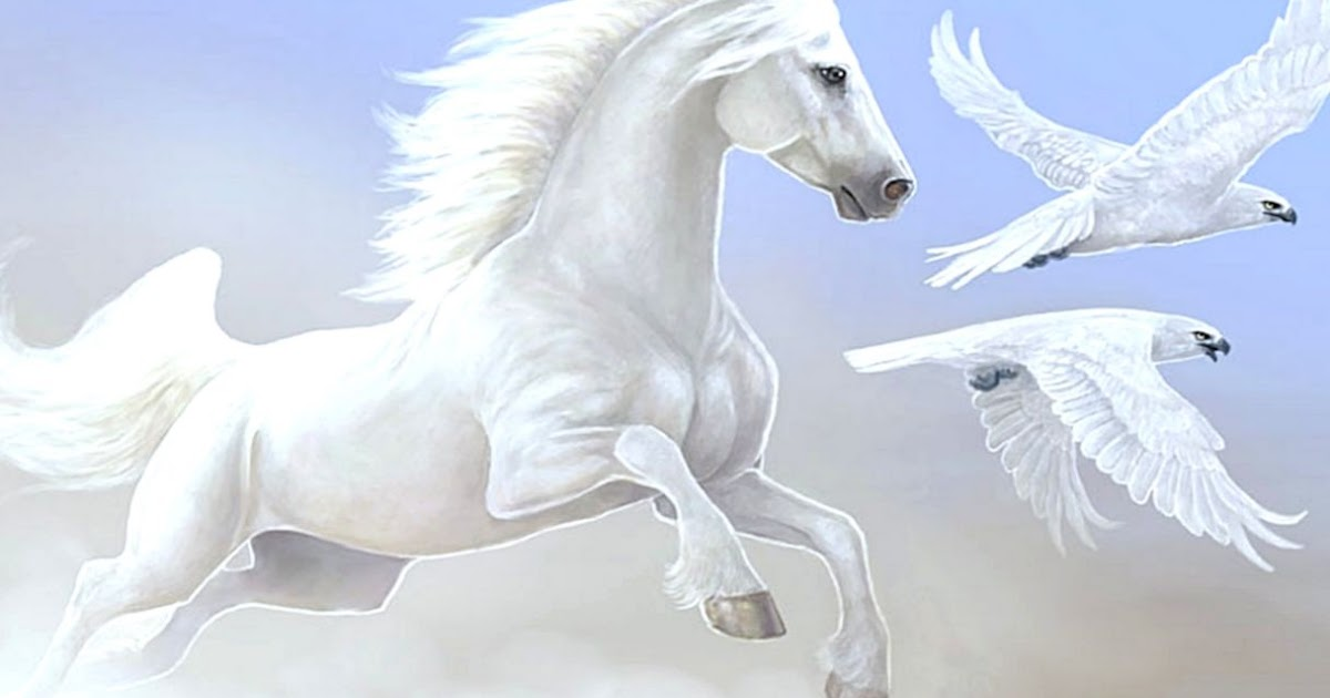 Beautiful Horses Wallpaper Hd Wallpapers Plus