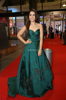Raashi Khanna in Dark Green Sleeveless Strapless Deep neck Gown at 64th Jio Filmfare Awards South ~  Exclusive 154.JPG