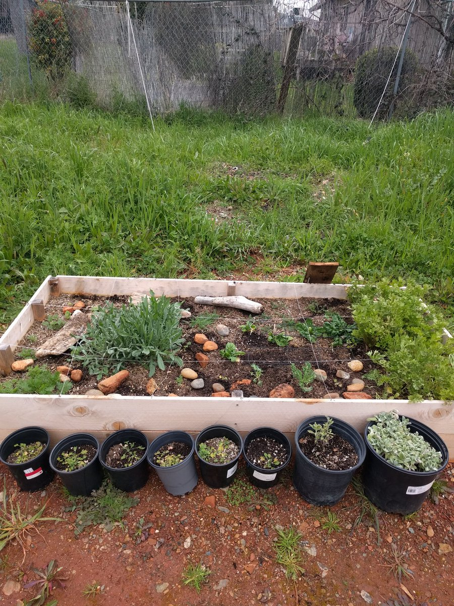 Building A Raised Flagstone Patio: In The Garden: Building A Raised Garden Bed