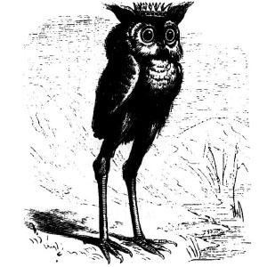 Goetia - Stolas (Illustration)