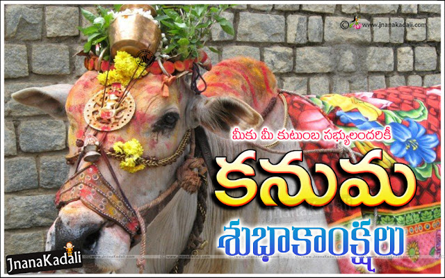 Latest Kanuma greetings Quotes in Telugu, Telugu kanuma festival quotes