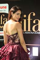 Pragya Jaiswal Sizzles in a Shantanu Nikhil Designed Gown  Exclusive 015.JPG