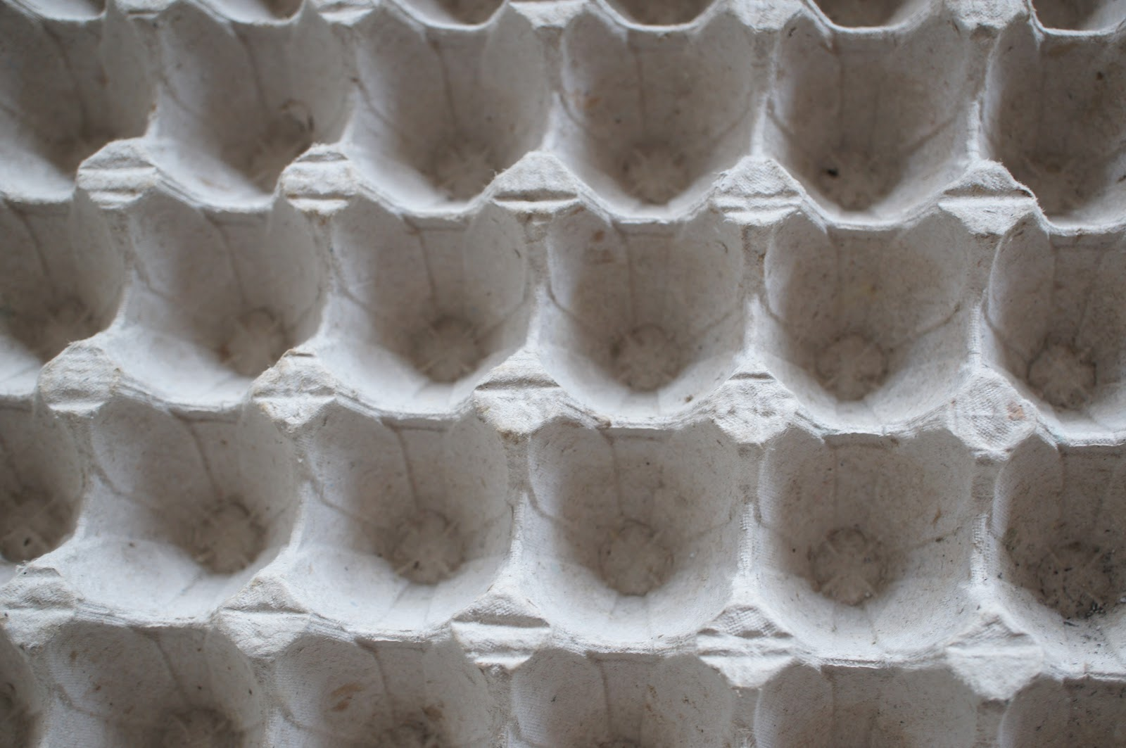 Paper pulp egg tray pattern free picture for commercial use