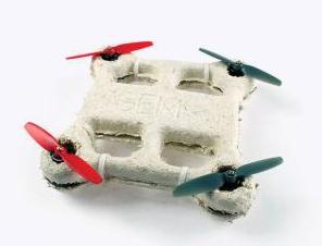Un drone biologico