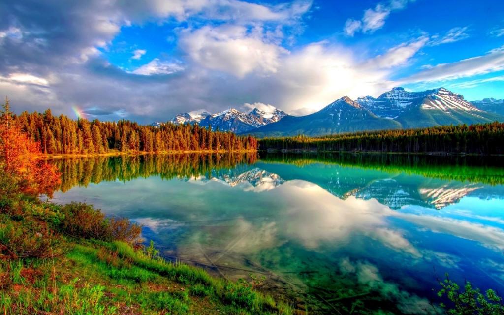 Immagini gratis cc0 natura tantilink for Immagini natura gratis