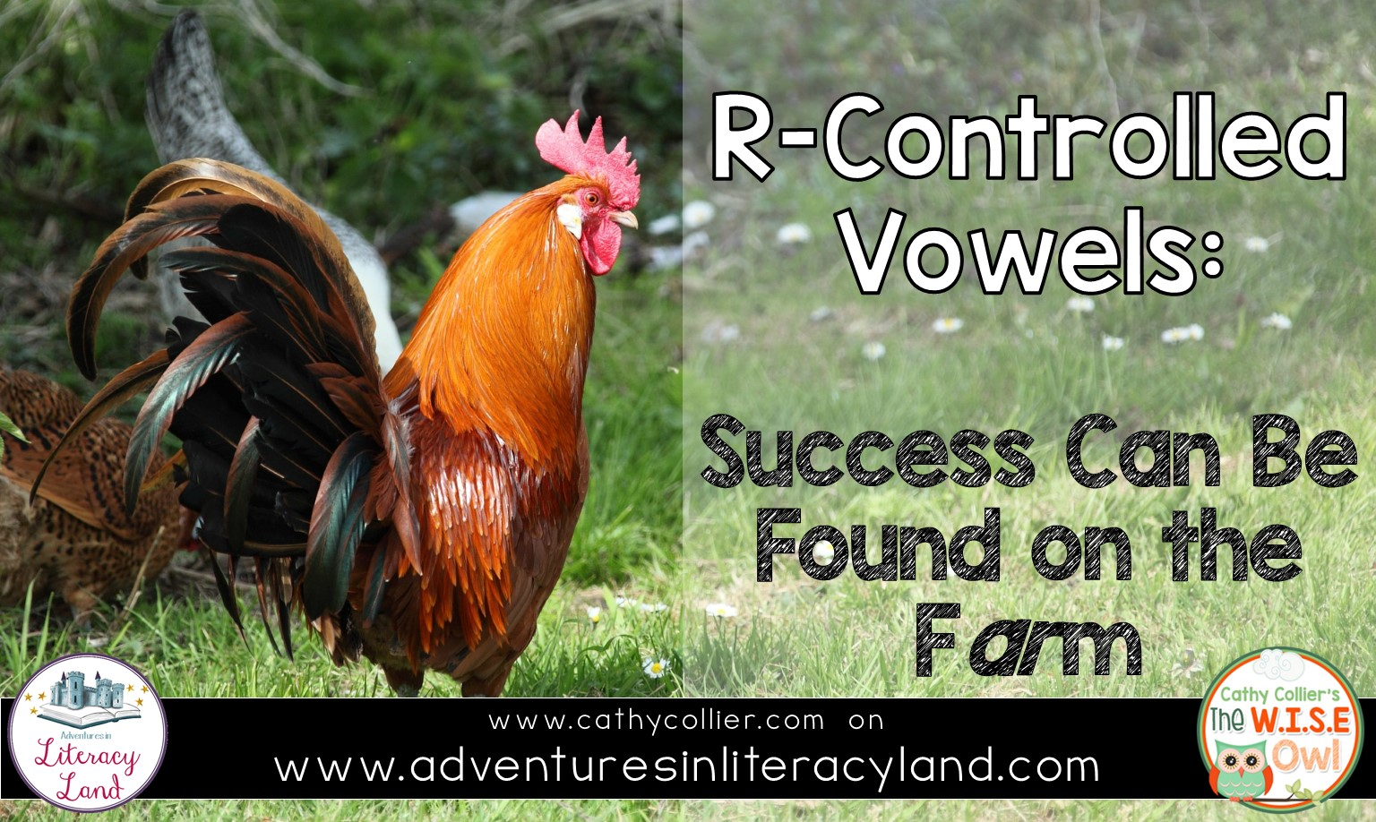 R Controlled Vowels Success Can Be Found On The Farm