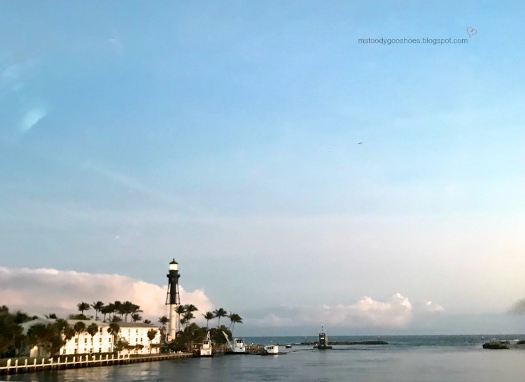 Lighthouse Point, FL | Ms. Toody Goo Shoes