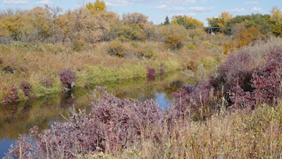Eastend, Saskatchewan, bridge, Frenchman River, fall colours