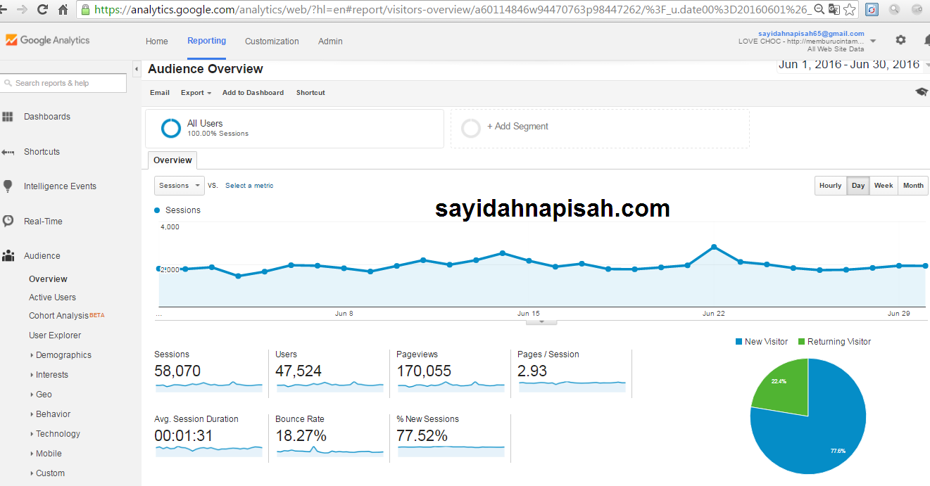 Pageviews(PV) & Unique Visitors(UV) sayidahnapisah.com Bulan Jun 2016