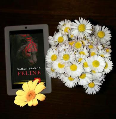 http://matutteame.blogspot.it/2017/04/sarah-bianca-feline-recensione-libro.html