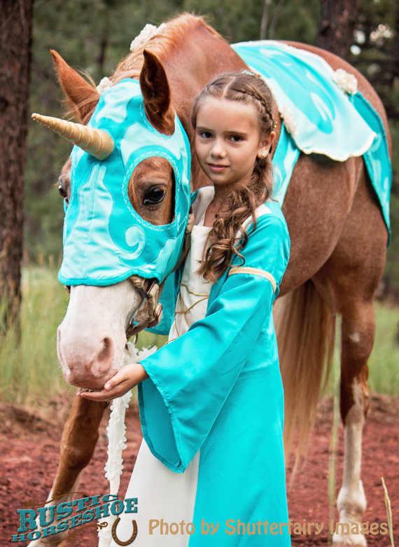 15 halloween costumes to dress up with your pet diy danielle dress up your horse as a unicorn and your childyourself as a maiden solutioingenieria Gallery