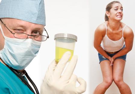 Tanaman Obat Infeksi Saluran Kencing Pada Wanita dan Pria
