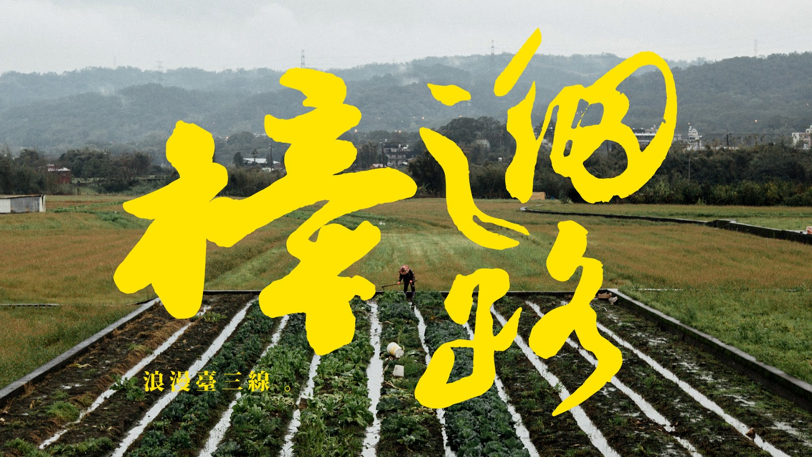 KNOX △ LIVE WILD: 【樟之細路】Raknus Selu Trail:台灣長程步道的想望