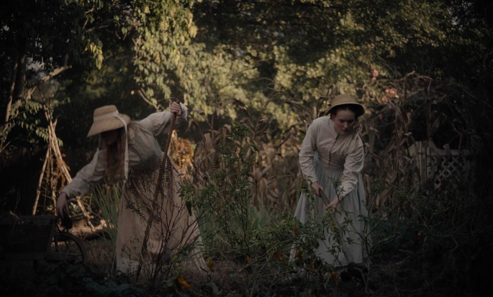 El Seductor (2017) HD 1080p Dual latino - Ingles captura 2