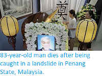 http://sciencythoughts.blogspot.co.uk/2017/09/83-year-old-man-dies-after-being-caught.html