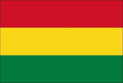 Curiosidades sobre a Bolívia