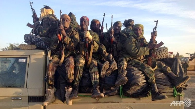 chadian army takes town boko haram