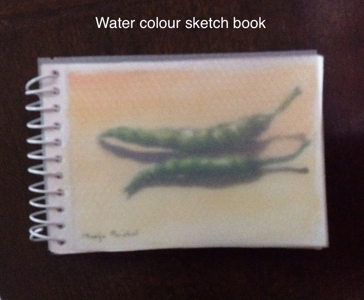 Water colour sketch book created by Manju Panchal